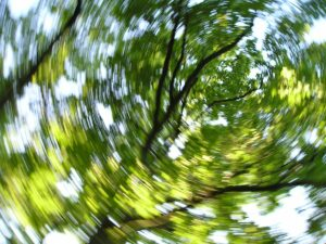If you are dizzy or unbalanced, the cause could be one of many reasons.